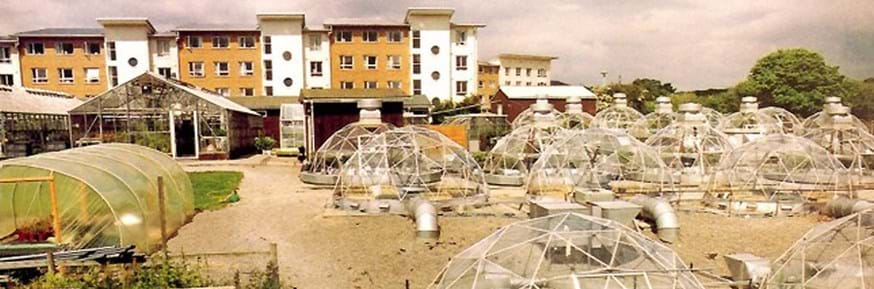 On the left, greenhouses and polytunnels, and on the right, space-age looking glass domes, all containing plants. In front of university office/apartment buildings