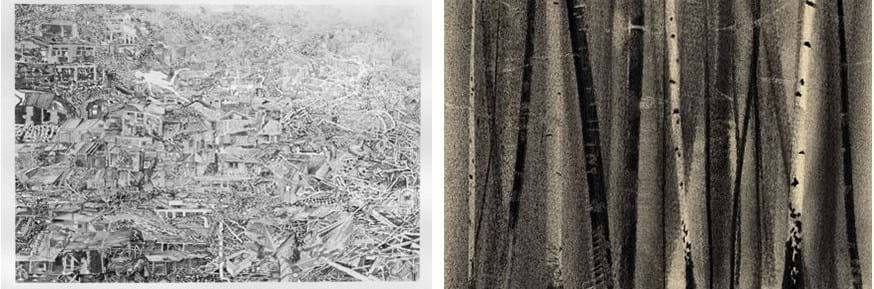 The image on the left is 'Flood Story: Shanty Town', by Gerry Davies, one of two drawings which won the 'Wales Contemporary' competition and the image on the right is 'The Wood', one of the charcoal on paper drawings, by Pip Dickens, acquired by the British Museum