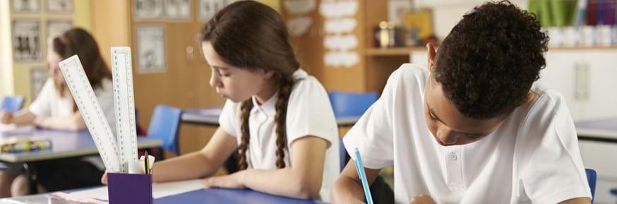 Primary school children working in the classroom