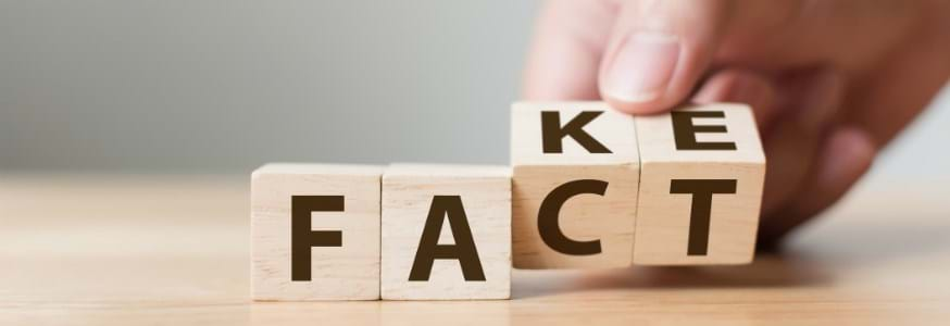 Wooden blocks showing the words 'fact' and 'fake'