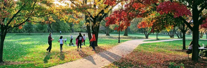 Group gathering in a park
