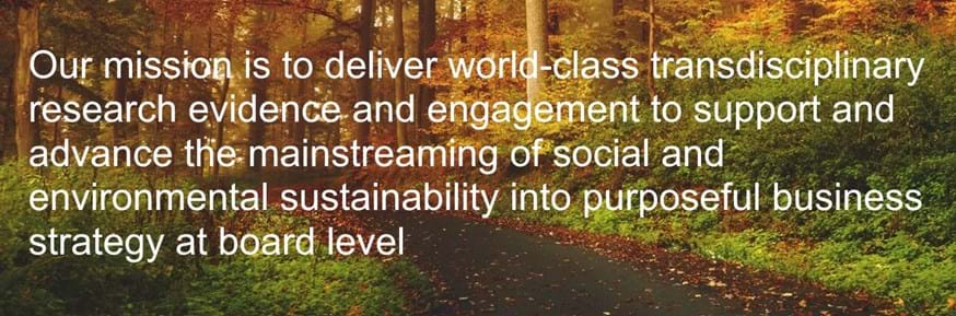 Autumnal forest background overlaid with white text reading 'Our mission is to deliver world-class transdisciplinary research evidence and engagement to support and advance the mainstreaming of social and environmental sustainability into purposeful business strategy at board level'