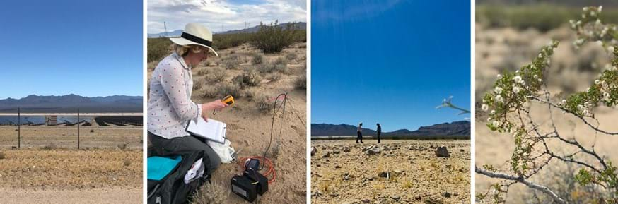 L-R: Stateline Solar Park, Dr Alona Armstrong taking a soil surface measurement, Dr Alona Armstrong and Dr Rebecca R. Hernandez walking a soil surface transect, Creosote bush (Larrea tridentata), a dominant evergreen shrub found in the Ivanpah Valley, where Stateline PV Solar Park is located.