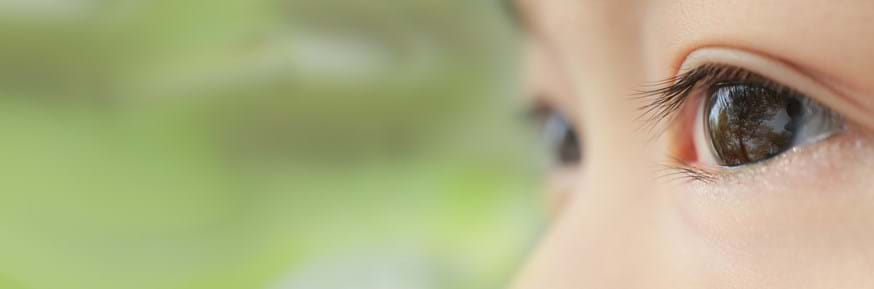 Close image up of a young child's eyes used on the front cover of the report