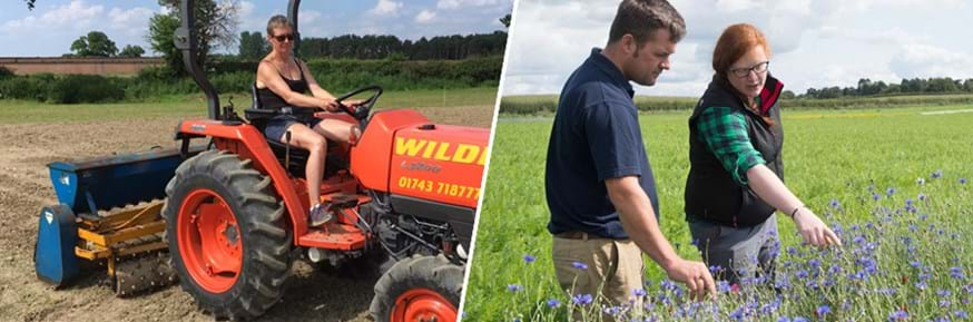 Composite image showing a female researcher working a tractor (left) and a female researcher discussing a patch of blue flowers with a male farmer